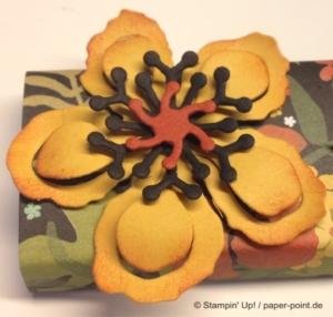 Pflanzen-Potpourri